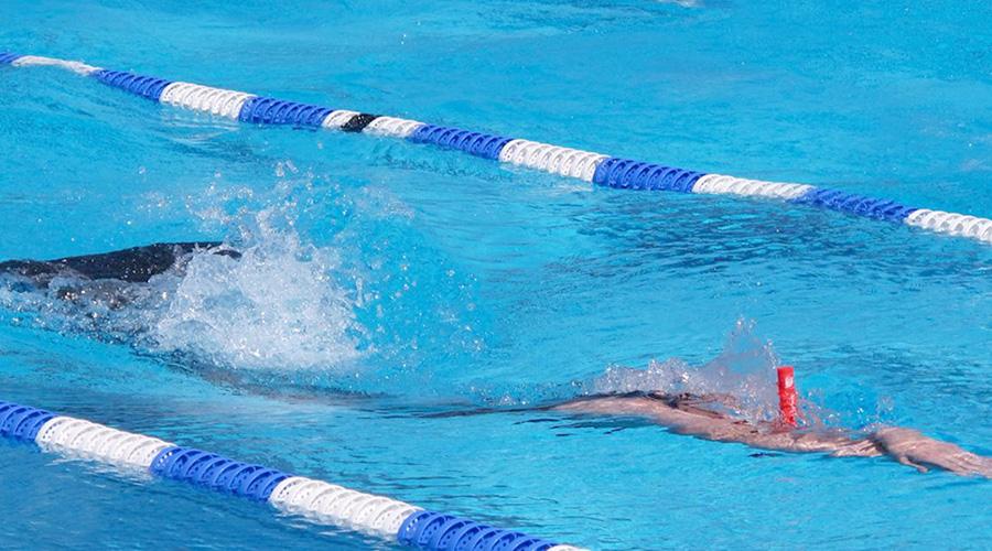 campionat espanya equips hivern 2017 natacio aletes